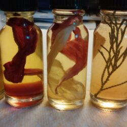 Elemental oils: Spirit, Air, Fire, Earth, Water